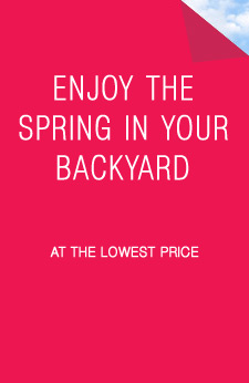 enjoy the spring in your backyard