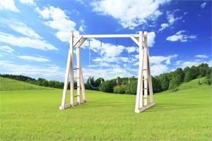 outdoor playset The Swing