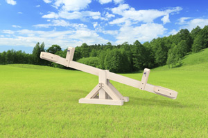 outdoor playset The Teeter